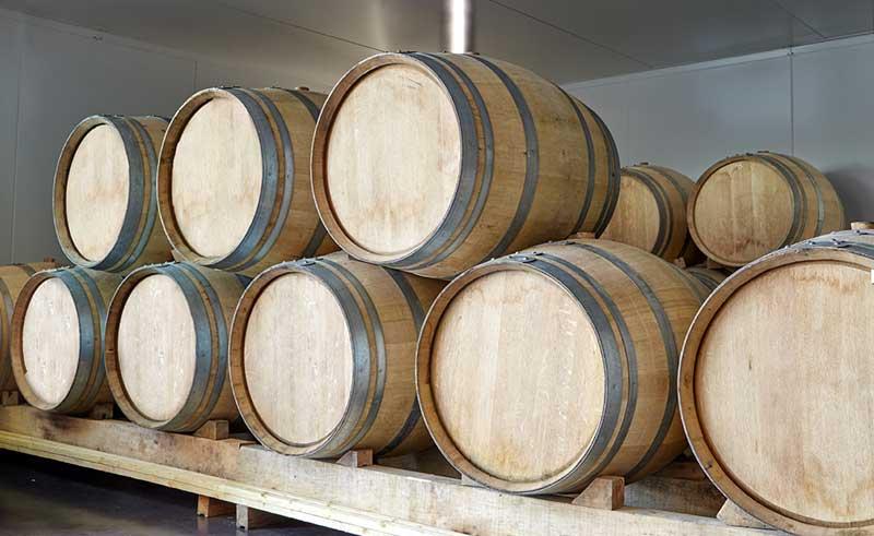 Visite-Dégustation Champagne-Accords mets-vins « simplifiés »