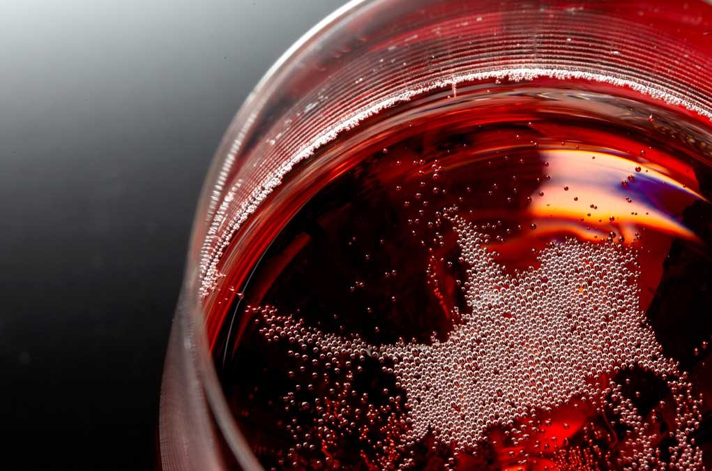 Visite – Dégustation Champagne – Accords mets-vins