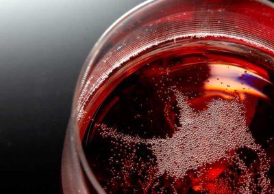 Visit –Champagne tasting – Wine and food pairings